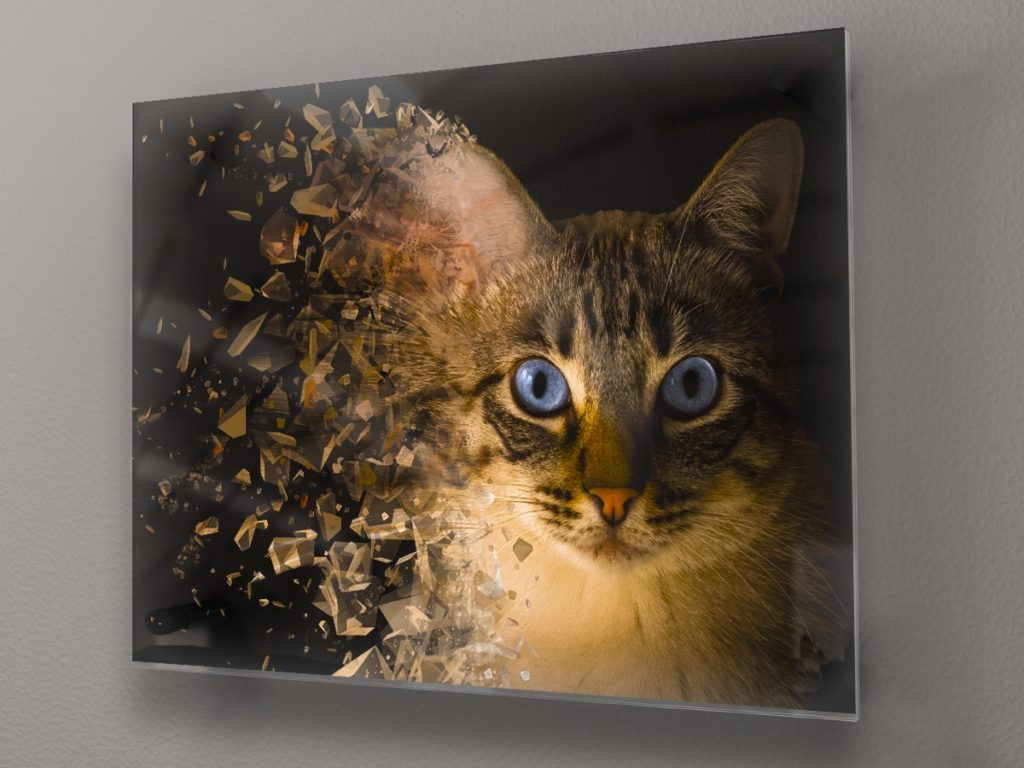 Декорация за стена - стъклена картина gp009