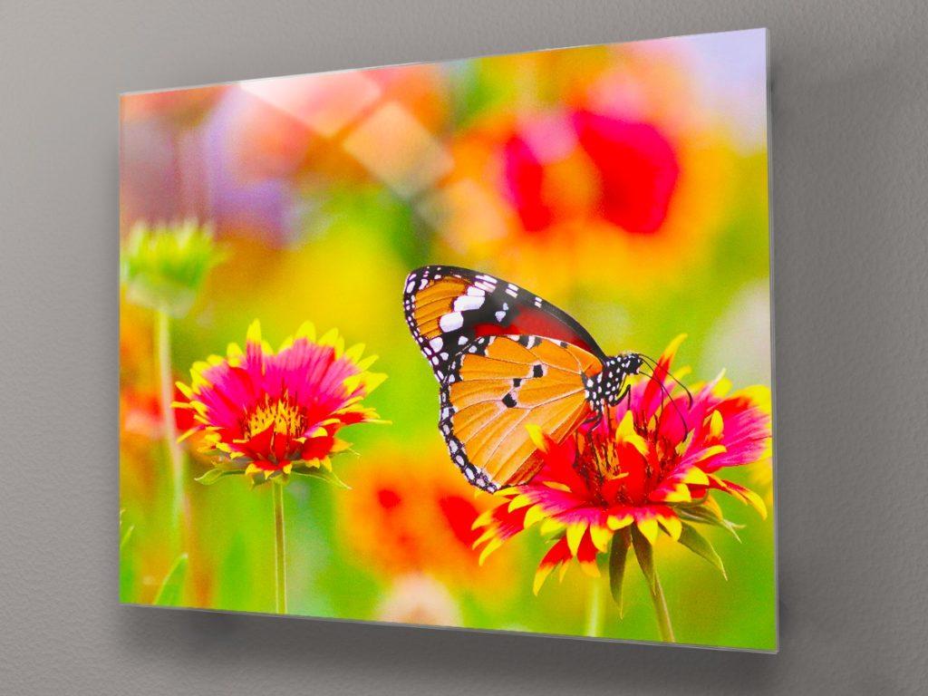 Декорация за стена - стъклена картина gp022